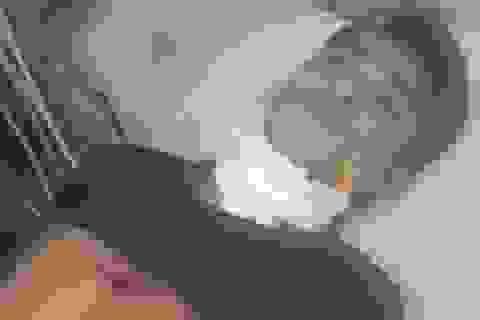 Người phụ nữ trẻ bị giết trong nhà nghỉ
