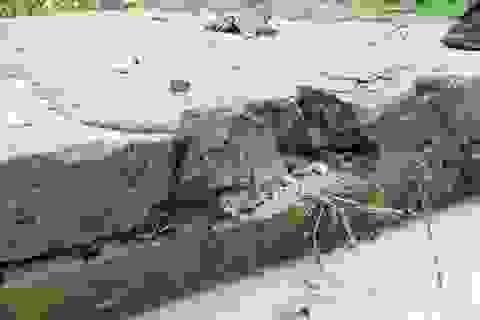 Công trình thủy lợi chưa làm xong đã hỏng: Cần xin thêm 60 tỉ đồng!
