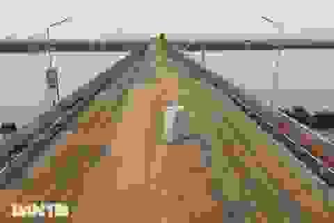 Nhân sự Trung Quốc làm gì tại dự án sửa chữa cầu Thăng Long?