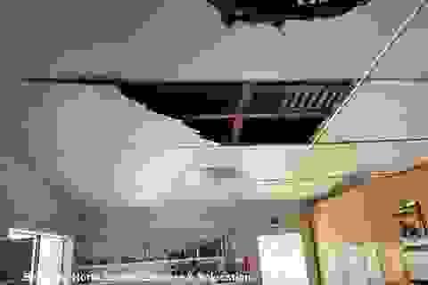 Choáng với 2 con trăn lớn đục thủng trần rơi xuống nhà bếp