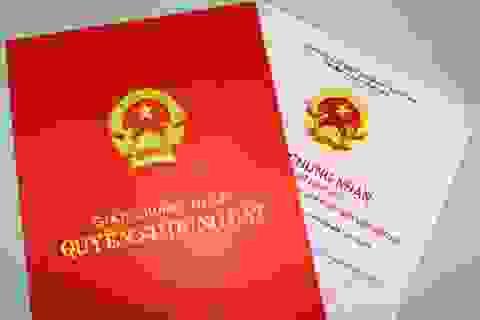 Tạm đình chỉ công tác Giám đốc chi nhánh Văn phòng đăng ký đất đai Sơn Trà
