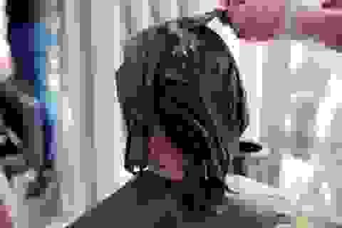 Công ty của nữ Chủ tịch 9X vay 738 tỷ đồng kinh doanh... cắt tóc, gội đầu!