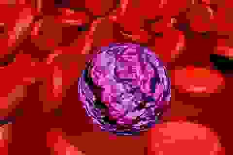 Ung thư máu và những phương pháp điều trị