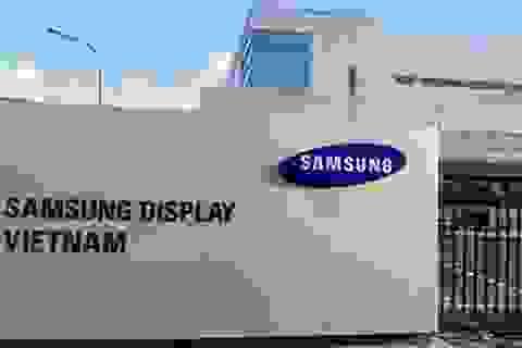 """Vì sao Phó Chủ tịch Tập đoàn Samsung được """"đặc cách"""" khi đến Việt Nam?"""