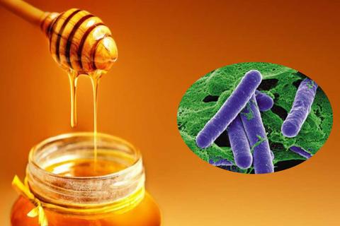 Mật ong có thể chứa vi khuẩn trong pate Minh Chay, cần lưu ý điều gì?