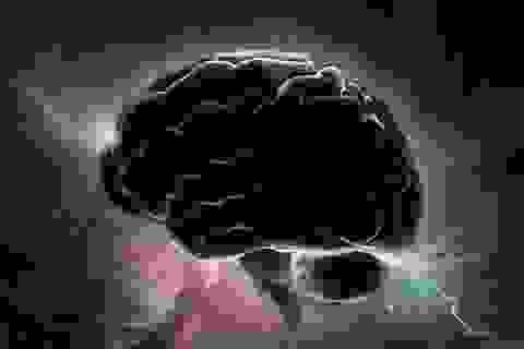 Phát hiện những thay đổi trong não các nhà du hành