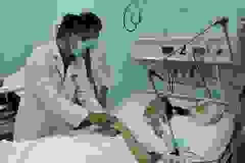 Bệnh nhân yếu liệt cả tháng mới được phát hiện ngộ độc pate Minh Chay