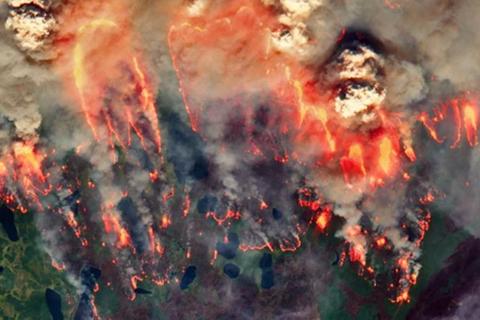 """""""Đám cháy xác sống"""" bùng phát ở Bắc Cực"""