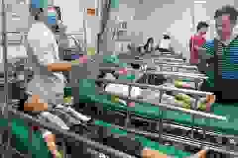 Nghệ An: Nhiều học sinh bị ong đốt phải nhập viện cấp cứu