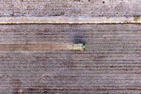 Mỹ muốn chặn hàng dệt may có chứa bông từ Tân Cương, Trung Quốc