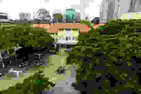 Kiến trúc độc đáo của ngôi trường tồn tại hơn 1 thế kỷ ở TPHCM
