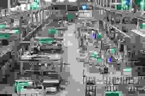 Lạng Sơn: Nâng cao NSCL sản phẩm hàng hóa đạt hiệu quả thiết thực