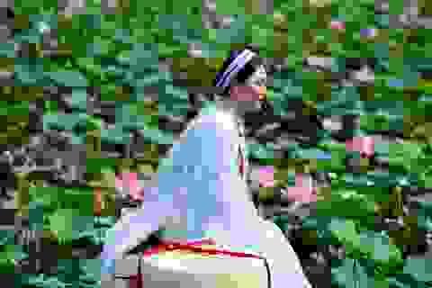 Du khách mê mẩn với đầm sen nở rực ở ngoại thành Sài Gòn
