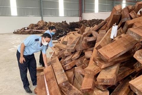 """Phát hiện lô gỗ quý """"khủng"""" nhập lậu từ Nigeria vào Việt Nam"""