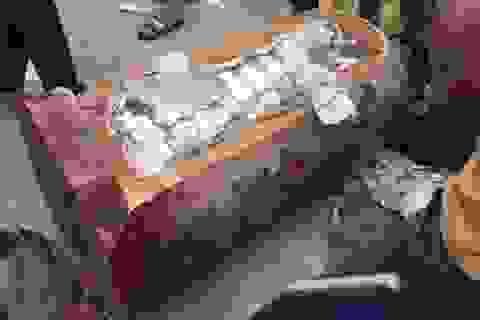 Bắt giữ 237 kg ma túy được giấu trong tượng gỗ tuồn về Việt Nam