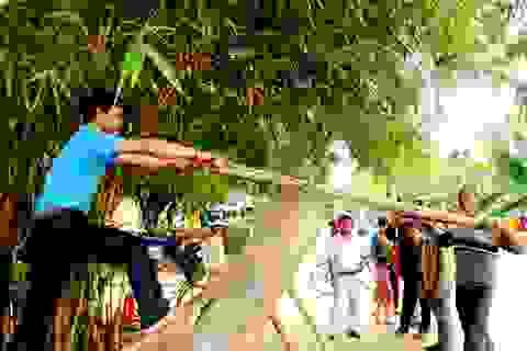 Quảng Nam chi gần 75 tỉ đồng để hỗ trợ phát triển du lịch cộng đồng