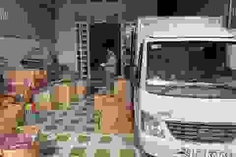 Phát hiện kho chứa hơn 7.000 sản phẩm đồ chơi trẻ em nhập lậu