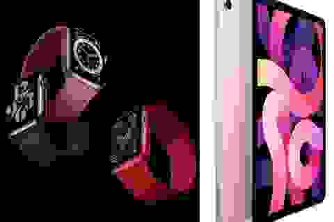Giá bán iPad Air 4 và Apple Watch 6 tại thị trường Việt Nam