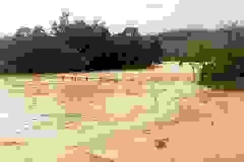 Hai huyện miền núi Quảng Nam bị chia cắt do bão số 5