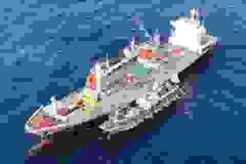 """Đội tàu Trung Quốc """"tận diệt"""" hàng nghìn tấn hải sản ngoài khơi Ecuador"""