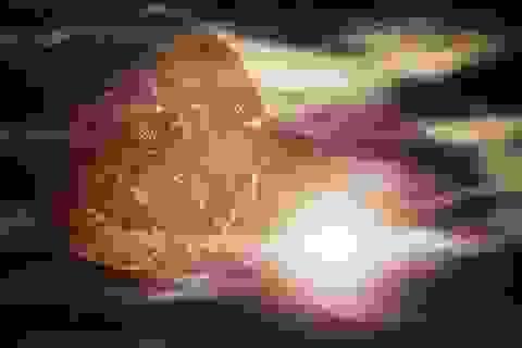 Tàu vũ trụ sắp áp sát hành tinh ngay gần Trái đất có dấu hiệu của sự sống