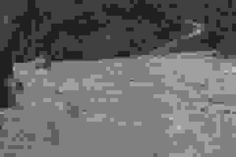 Mưa lớn sau bão số 5 khiến hơn 3.000 người ở Quảng Bình bị chia cắt