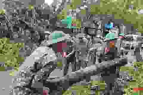 Thừa Thiên Huế căng mình khắc phục thiệt hại do bão số 5 gây ra