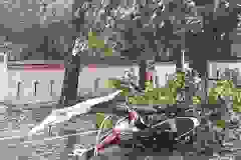 Thêm 2 người tử vong do bão số 5 tại Thừa Thiên - Huế