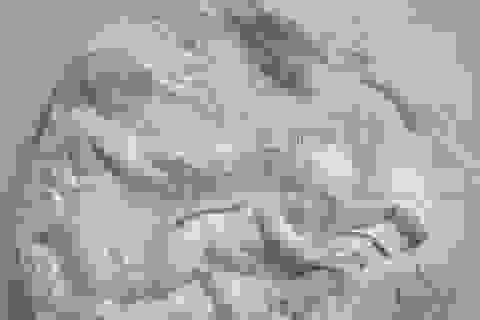 Bức điêu khắc trị giá hơn 3.000 tỷ đồng giải cứu 150 người khỏi thất nghiệp