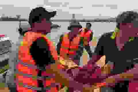 Ròng rọc tàu cá rơi trúng người ngư dân gây tử vong