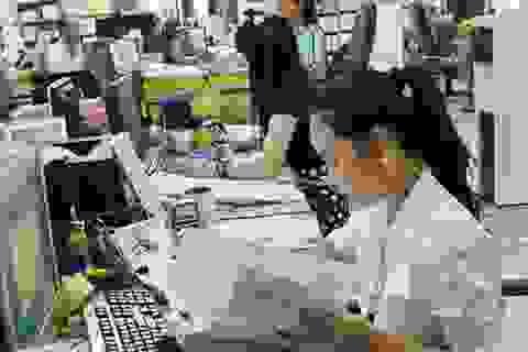 Quảng Trị:  Nhiều doanh nghiệp nợ BHXH với tổng số tiền hơn 31 tỷ đồng