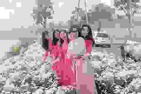 """Thung lũng hoa Phủ Quỳ, điểm """"check in"""" tuyệt đẹp giữa núi đồi xứ Nghệ"""