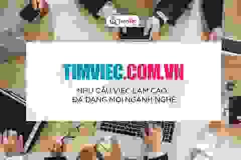 Timviec.com.vn - Hỗ trợ lao động phổ thông tìm việc