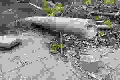 """Công bố nguyên nhân 600 cột điện bị """"hạ gục"""" trong 30 phút mưa bão"""