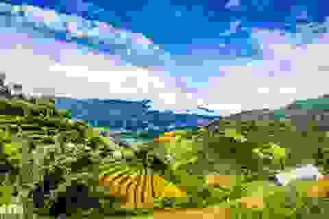 Chạy bộ khám phá vẻ đẹp rực rỡ của những bản làng Mù Cang Chải