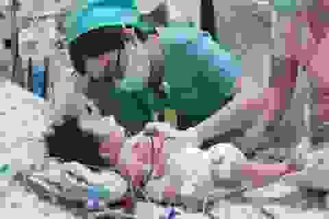 Bé sơ sinh ngộ độc nặng vì trong thai kỳ, mẹ ăn quá nhiều củ dền