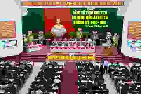 Phấn đấu phát triển Kon Tum thành vùng dược liệu quốc gia