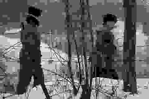 Binh sĩ Triều Tiên nghi bắn chết quan chức Hàn Quốc đào tẩu