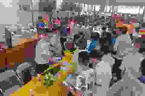 Thanh Hoá: Giải quyết việc làm cho 336.000 lao động
