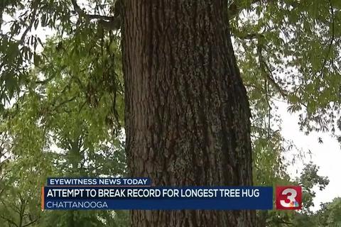 Ôm cây hơn 10 tiếng đồng hồ để lập kỷ lục Guinness thế giới