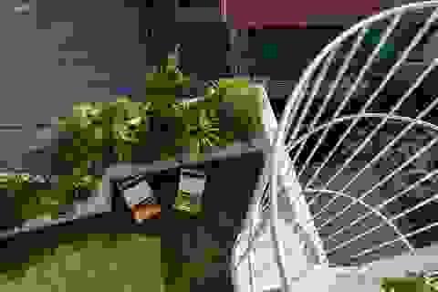"""Ngôi nhà có khu vườn treo độc đáo khiến gia chủ ở nhà """"cả ngày không chán"""""""