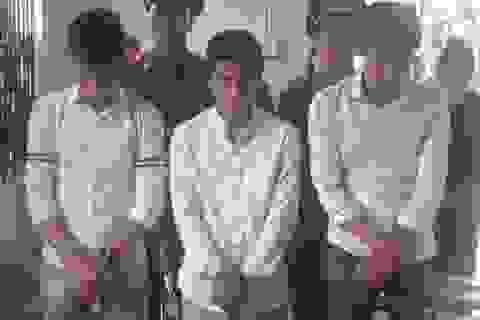 """Chặt phá cờ, 3 thanh niên bị kết tội """"xúc phạm quốc kỳ"""""""