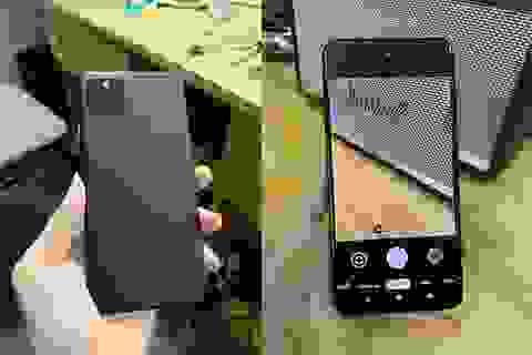 Chưa ra mắt, điện thoại của Google đã bị rao bán tràn lan tại Việt Nam