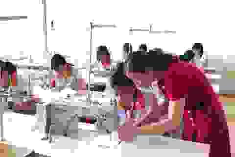 Thái Bình đặt mục tiêu mỗi năm tạo việc làm mới cho khoảng 34.500 lao động