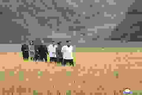 Ông Kim Jong-un thị sát vùng lũ, em gái xuất hiện sau nhiều đồn đoán