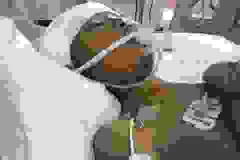 Nhói lòng cảnh cậu bé 8 tuổi thoi thóp trên giường bệnh