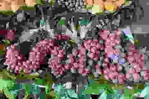 """Thái Lan cảnh báo trái cây Trung Quốc rủi ro tồn dư """"thuốc sâu"""""""