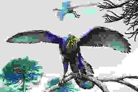 Bí ẩn hóa thạch lông khủng long cổ nhất hơn 1,5 thế kỷ chưa có lời giải
