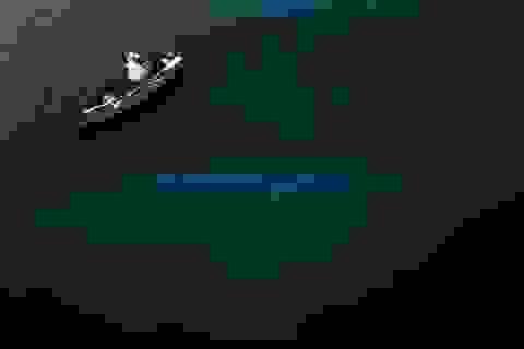 Megalodon là loài cá lớn nhất đại dương?