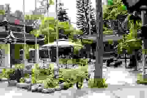 """Ấn tượng không gian """"Vườn trong phố"""" thơ mộng giữa lòng Hà Nội"""